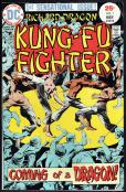 Richard Dragon Kung-Fu Fighter   #1
