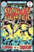 Richard Dragon Kung-Fu Fighter