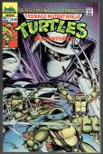 Teenage Mutant Ninja Turtles Adventures   #1