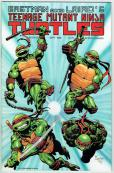 Teenage Mutant Ninja Turtles  #25