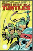 Teenage Mutant Ninja Turtles  #26